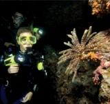 padi-night-scuba-diving-class-taking-night-course